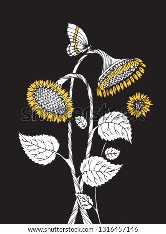 sunflower logo hand drawing