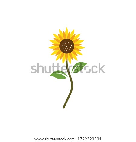 Sunflower logo icon vector illustration Foto stock ©