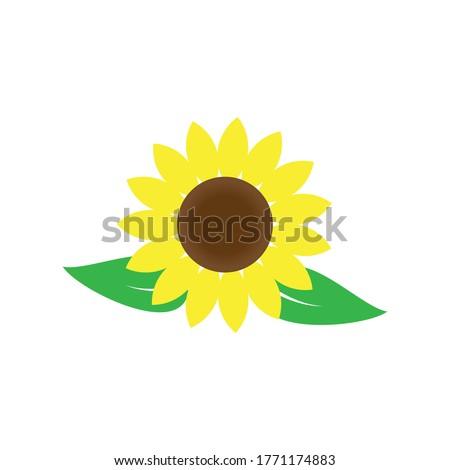sunflower logo icon vector