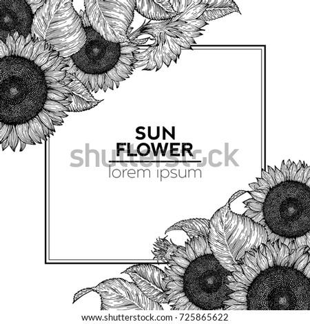 sunflower retro design template
