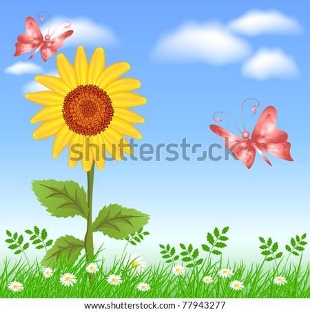 Sunflowers, grass, clouds and butterflies