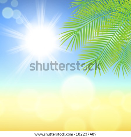 sunny background with palm