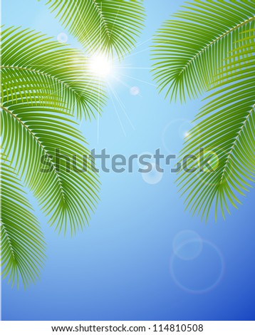 Sunny blue sky and palm branches. Vector illustration.
