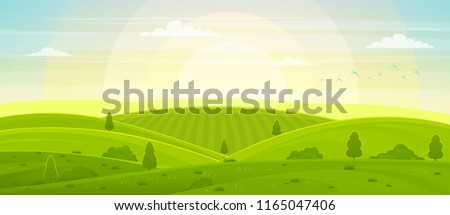 sunny rural landscape with