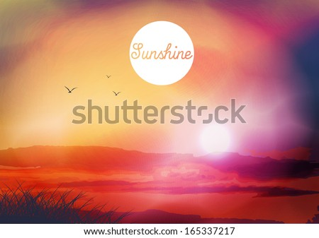 sunset and field with birds