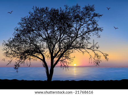 Sunset at the seaside with a Tree silhouette.