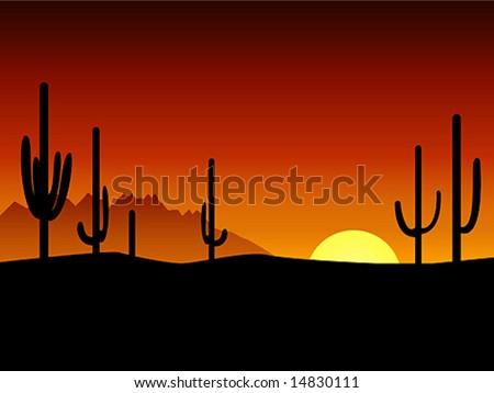 Sunset. Desert. Cactus.