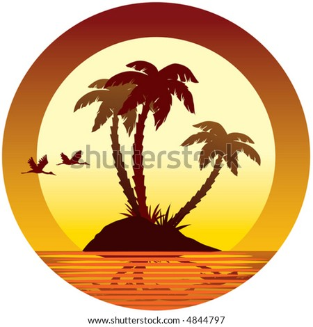Sunset, island, palms and birds, vector
