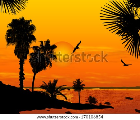 sunset on beautiful tropical