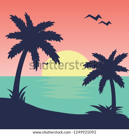 sunset tropical beach palms