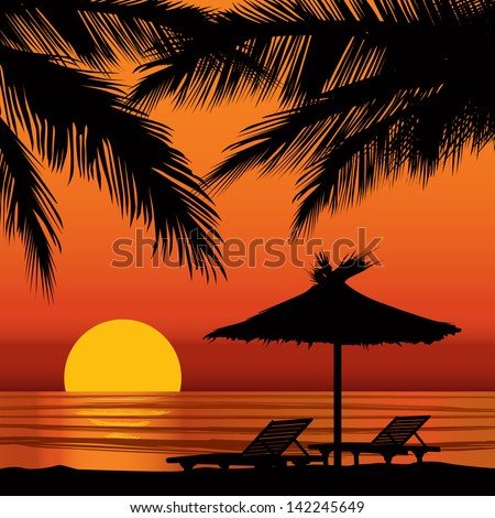 sunset view in beach with palm
