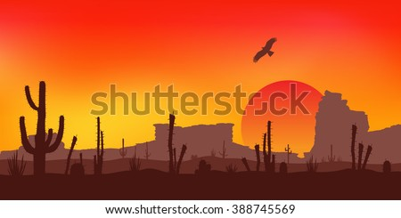 sunset with saguaro cactus