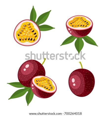 Superfood fruit. Set of passionfruit. Vector illustration cartoon flat icon isolated on white.