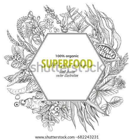 Superfood hexagon banner, sketch vector illustration, vegan healthy food design. Kelp, cacao, ginger, moringa, blueberry, goji, stevia, seeds, grain.