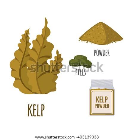 superfood kelp set in flat