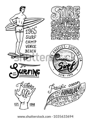 Surf badge and wave, palm tree and ocean. tropics and california. man on the surfboard, summer on the beach and the sea. engraved emblem hand drawn. Banner or poster. sports in Hawaii.