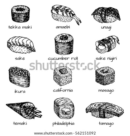 Sushi and rolls hand drawn illustration. Set of sketches Japanese food for menu of asian restaurant, brochures, flyers, posters, web sites