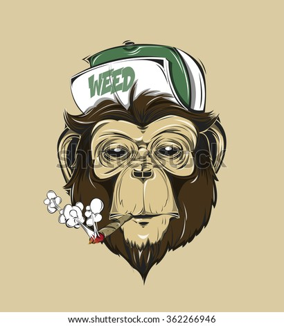 SWAG monkey in a cap or baseball cap with weed print for t-shirt. HIPSTER print. Monkey modern street style attributes. Vector art. Monkey head for poster.