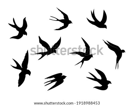 Swallows. Black silhouette on a white background. Silhouette of a swarm of swallows. Black contours of flying birds. Flying swallows. Tattoo vector illustration isolated on white background. Foto stock ©