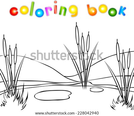 swamp coloring book vector