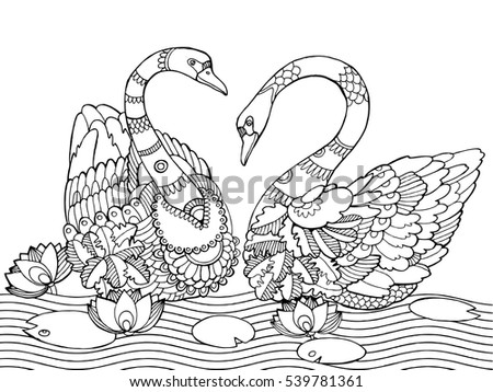 swan coloring book for adults