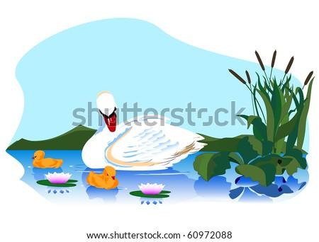 swan family on walk on lake