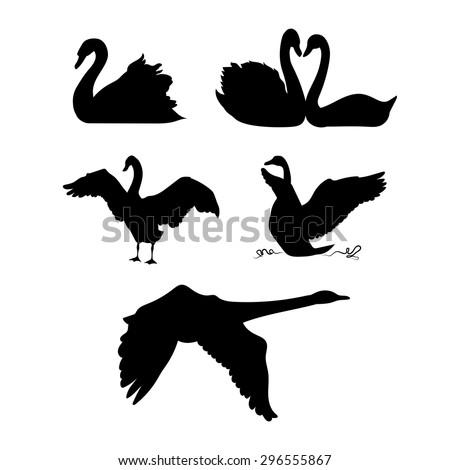 stock-vector-swan-vector-silhouettes