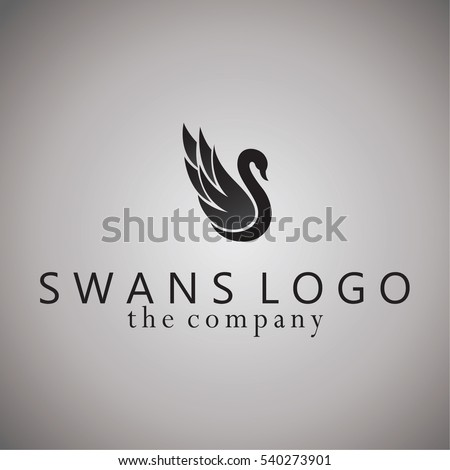 swans ideas design vector