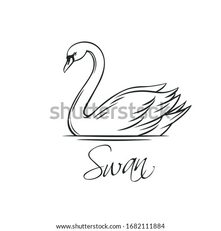 Swans outline icon. Romantic bird for wedding invitation design. Vector illustration, isolated on white.