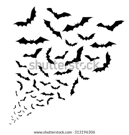 Swarm of bats on the white background.