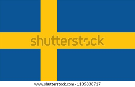 sweden flag  vector image and