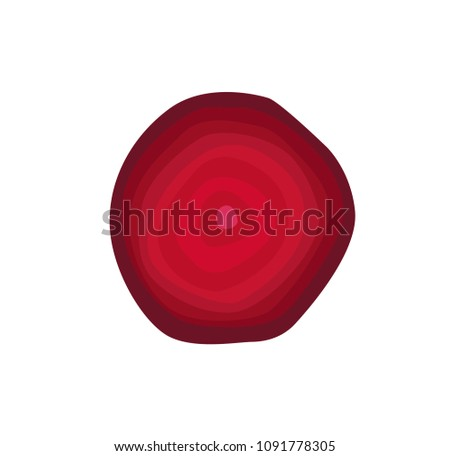Sweet beet round slice as ingredient for detox. Delicious juicy vegetable of saturated color to clean microflora isolated cartoon vector illustration.