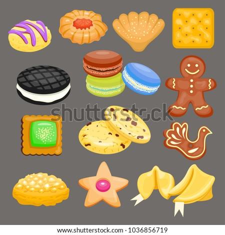 sweet cookie vector cakes tasty