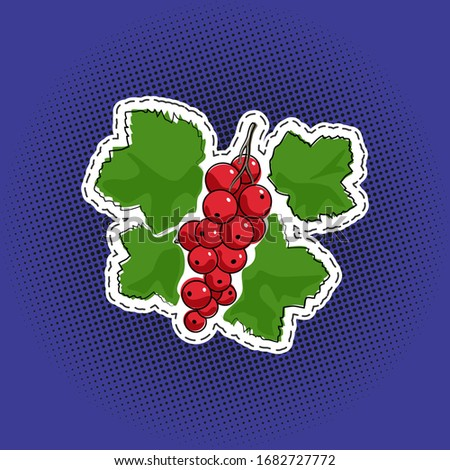 sweet fruit berry redcurrant