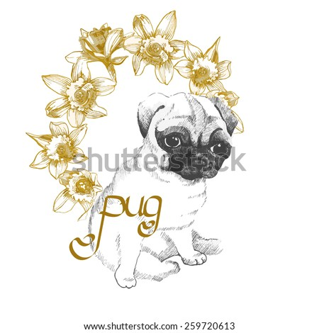 sweet little pug with daffodils