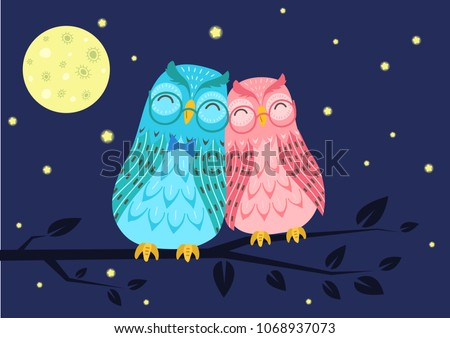 sweet owls couple on tree