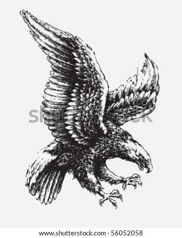 30 american eagle clipart vectors download free vector art graphics 123freevectors. Black Bedroom Furniture Sets. Home Design Ideas