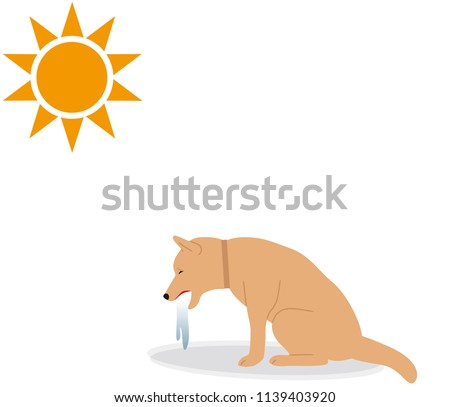Symptoms of heat stroke in dogs. vomiting.