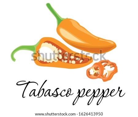 tabasco  chilli  pepper  icon