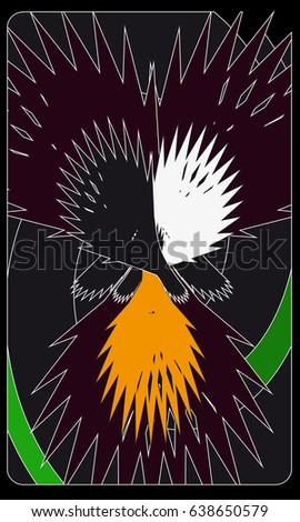 Tarot cards - back design. Phoenix #638650579