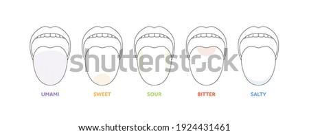 Taste scheme concept. Vector flat modern color illustration. Tongue with lips. Mouth tasty sense symbol. Umami, sweet, sour, bitter, salty outline icon set. Foto stock ©