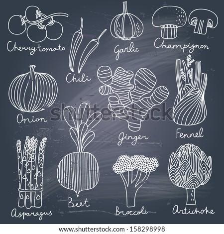 Tasty vegetables in vector set - cherry tomato, chili, garlic, champignon, onion, ginger, fennel, asparagus, beet, broccoli, artichoke. Tasty vegetarian  concept collection