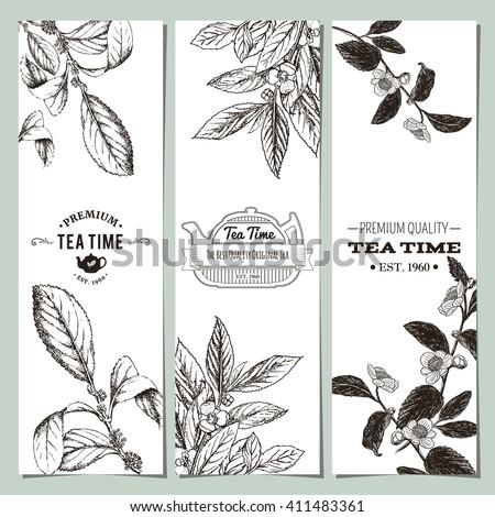Tea banner collection. Vector illustration