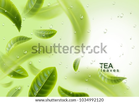 Tea leaves background. Green tea and water drops. Tea leaves whirl in the air. Vector illustration.