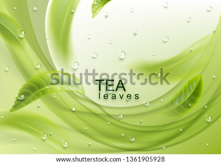 tea leaves background green