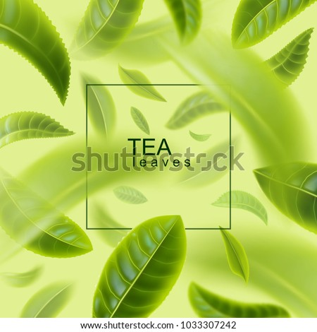 Tea leaves background. Green tea. Tea leaves whirl in the air. Vector illustration.