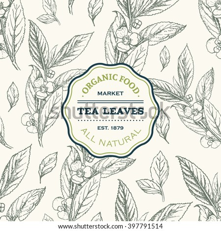 Tea leaves design template. Vector seamless pattern with hand drawn sketch. Vintage floral background isolated on white. Vector illustration.