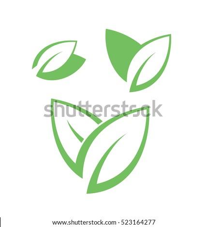 Tea leaves on white background. Green tea