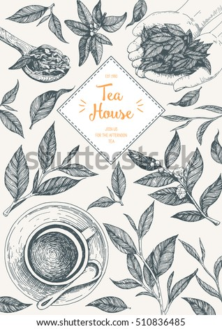 Tea Shop frame vector illustration. Vector card design with tea. Tea house poster. Vector hand drawn set. Linear graphic