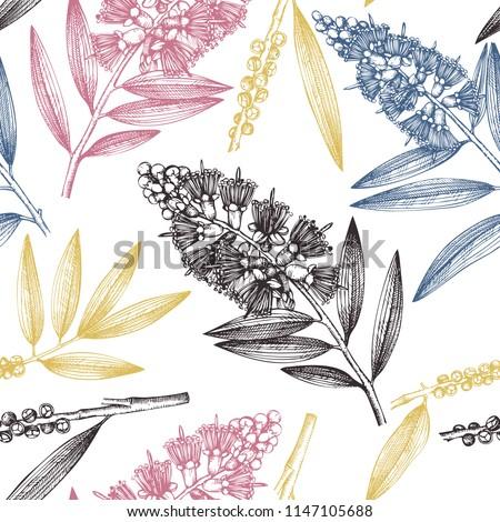 tea tree seamless pattern hand